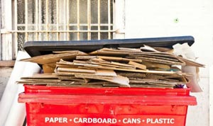 We can cater for different waste types